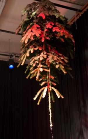 Dé kerstboom © pvh